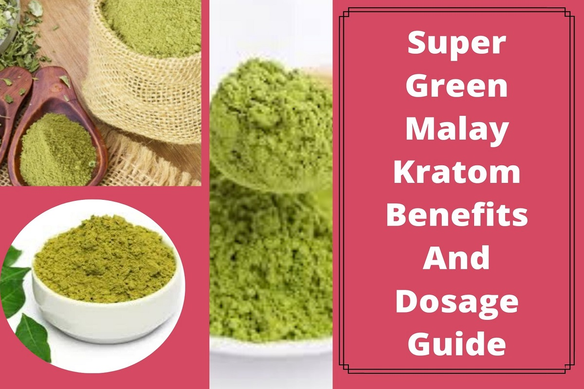 Super Green Malay Kratom Benefits And Dosage Guide