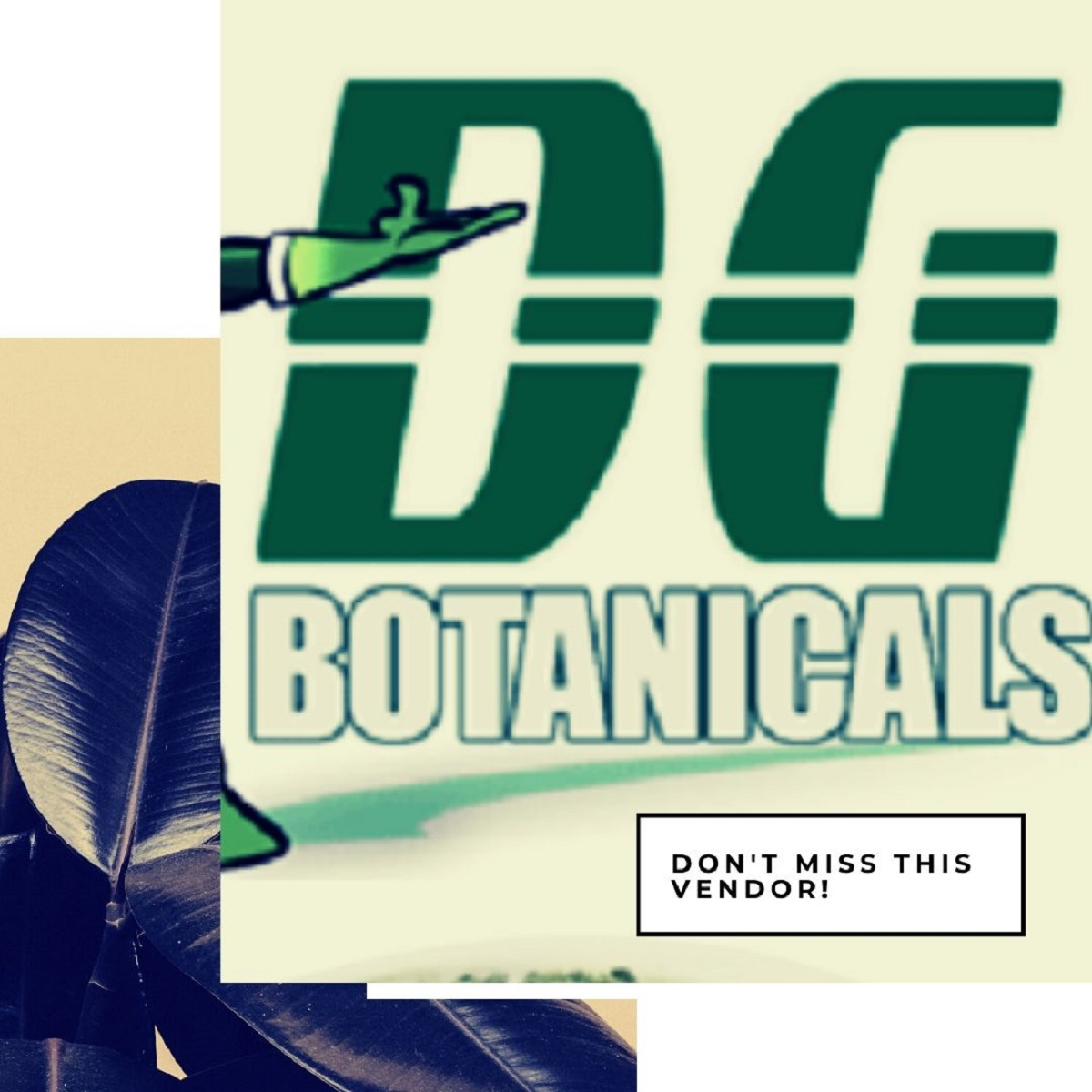 DG Botanicals review
