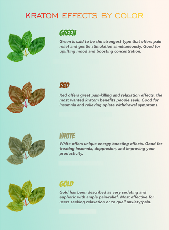 Kratom types by color