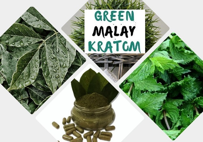 Green Malay Kratom benefits