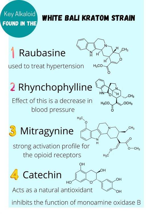 Key Alkaloid of white Bali