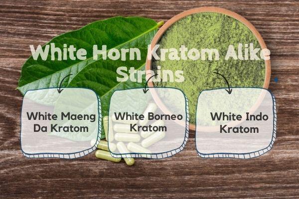 White Horn Kratom Alike Strains